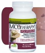 MICOTHERAPY POLYPORUS 90 capsule