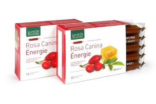 ROSA CANINA ENERGY 10 ampolle 10ml